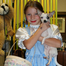 How to Make a Dorothy Costume