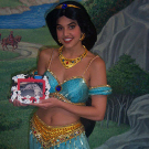 How to Make a Jasmine Costume