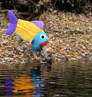 Fish-Eating-Dog-Costume
