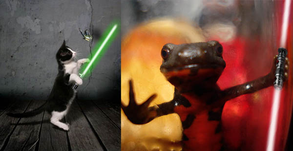 Animals-with-Light-Sabers