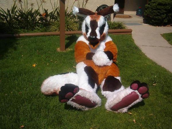 kangaroo-costume