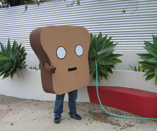 mr-toast-costume