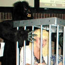 Gorilla Carrying Girl in Cage