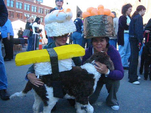Sushi-Dog-Costume
