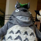 My Neighbor Totoro Costume