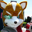 Star Fox Costume