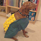 How To Make a Corn Dog Costume