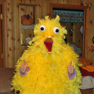Big Bird for Claire